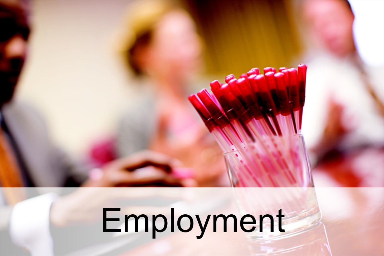 Link to Employment Related (AMAS, OUC, OFSLR, HR, OIE and more)